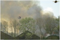 brand franeker 12052012 124.jpg