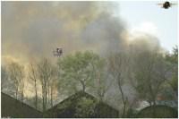 brand franeker 12052012 124.jpg