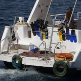 snorkeltrip3.jpg