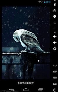 3d Matrix Live Wallpaper Apk Hedwig Live Wallpaper Apk For Iphone Download Android