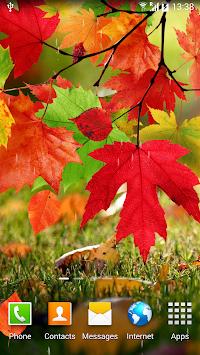Water Falling Leaves Live Wallpaper Apk Autumn Live Wallpaper Apk Apkname Com
