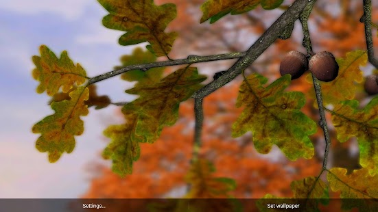 3d Parallax Weather Live Wallpaper For Android Os Autumn Leaves In Hd Gyro 3d Xl Parallax Wallpaper