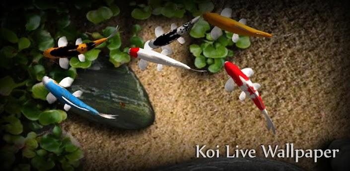 Interactive 3d Aquarium Live Wallpaper Koi Free Live Wallpaper Android Apps On Google Play