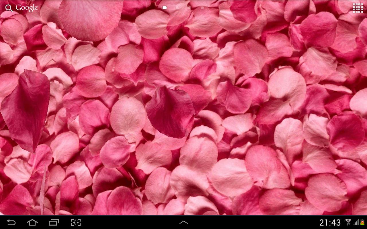 3d Hologram Wallpaper App Petals 3d Live Wallpaper Android Apps On Google Play