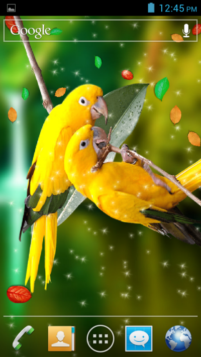 Birds 3D Live Wallpaper - Android Apps on Google Play