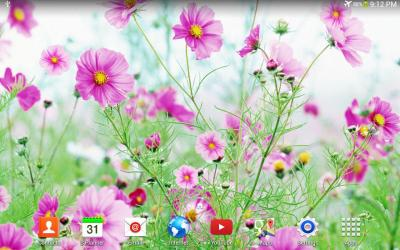 Sweet Flowers Live Wallpaper - Android Apps on Google Play