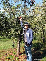Apple Picking-7.JPG
