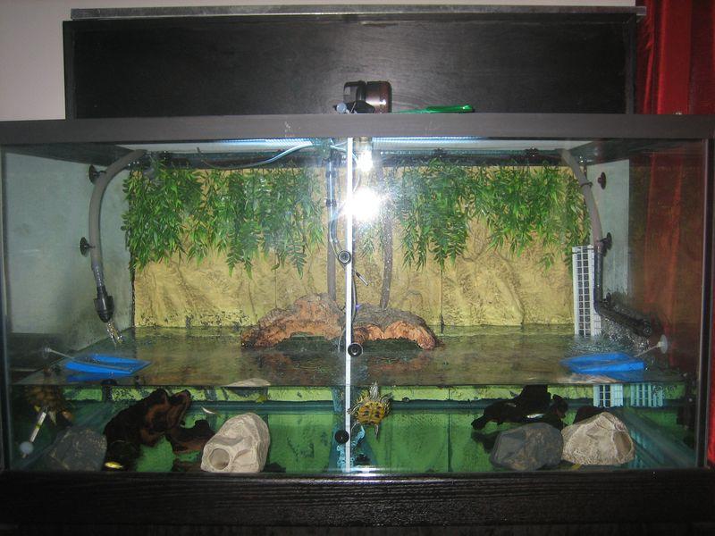 Pet Turtle Habitat 150 Gallon Pet Turtle Tank