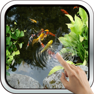 Magic Touch: Realistic Koi Live Wallpaper - Android Apps on Google Play