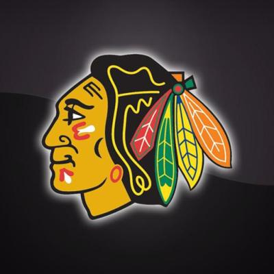 3D Chicago Blackhawks Live Wallpaper (378.88 Kb) - Latest version for free download on General Play