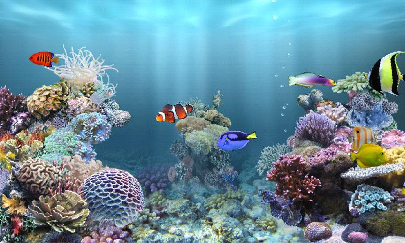 Fish Tank 3d Live Wallpaper For Pc Anipet Marine Aquarium Hd Android Apps On Google Play