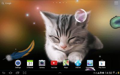 Sleepy Kitten Wallpaper Lite - Android Apps on Google Play