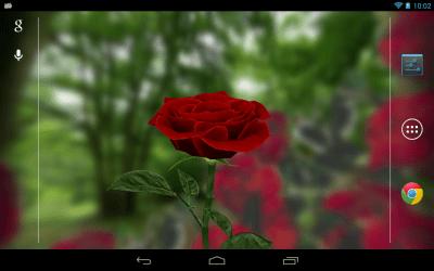 3D Rose Live Wallpaper Free - screenshot