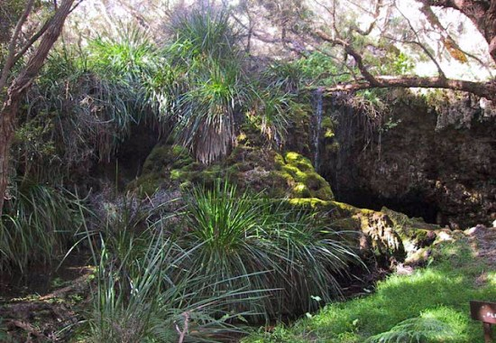 Meekadarabee Falls Cape to Cape Track