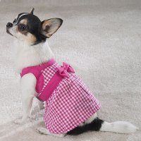 Dog Cute Dog: Tiny Dog Clothes - Dress Your Small Dog Up ...
