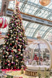 Christmas at Bellagio Botanical Gardens >> Local Adventurer