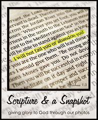 Scripture and Snapshot