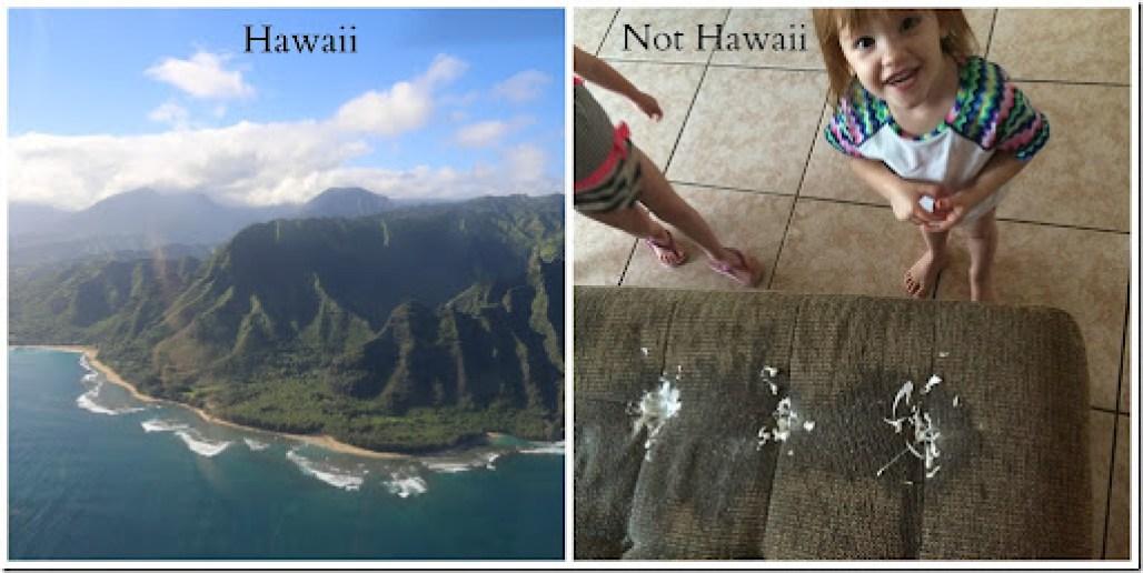 not hawaii2