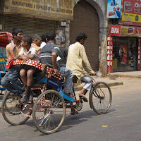 the streets in New Delhi are a real show and a real joy to photograph