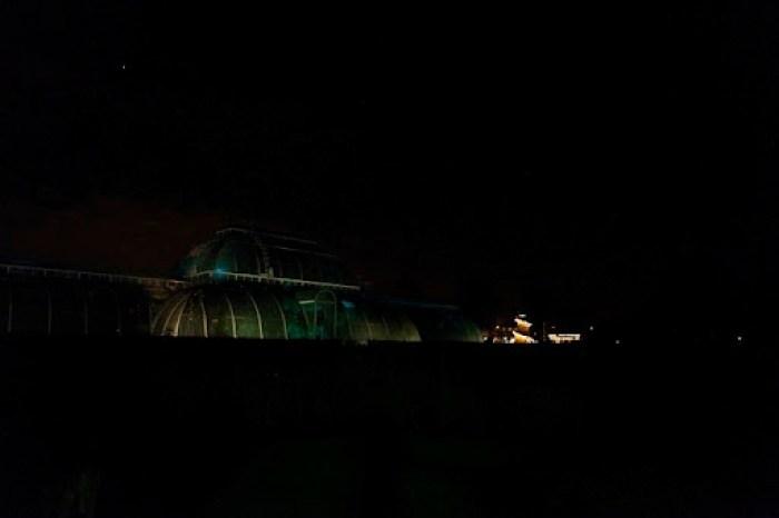 Christmas at Kew 41