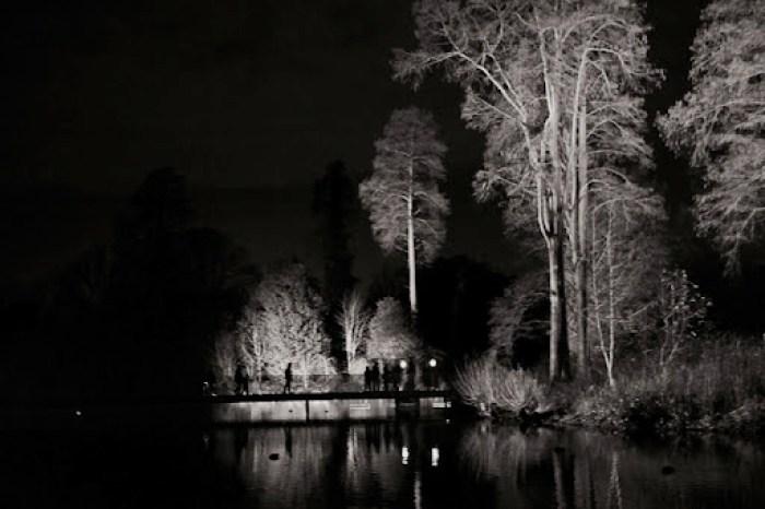 Christmas at Kew 26