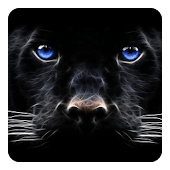 Black Panther Live Wallpaper - Android Apps on Google Play