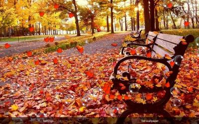 Autumn Live Wallpaper - Android Apps on Google Play