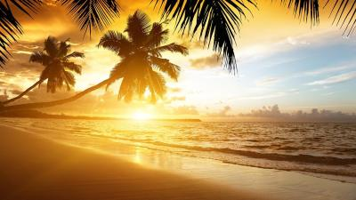 Beach Sunset Live Wallpaper - Android Apps on Google Play