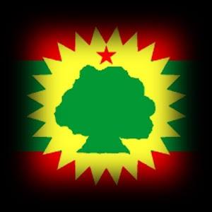 Sakura Falling Live Wallpaper Apk Download 3d Oromo Live Wallpaper Apk On Pc Download