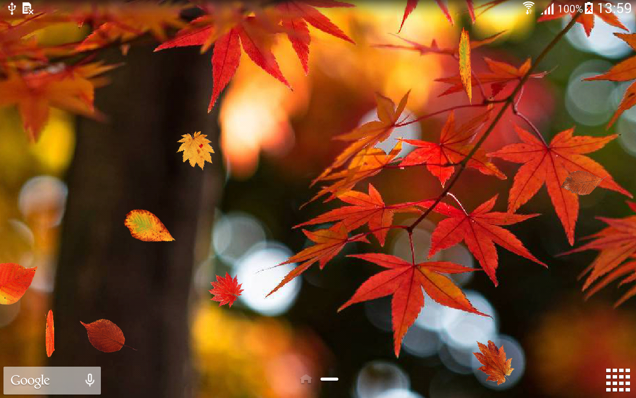 Autumn Tree Leaf Fall Animated Wallpaper Autumn Wallpaper Android Apps On Google Play