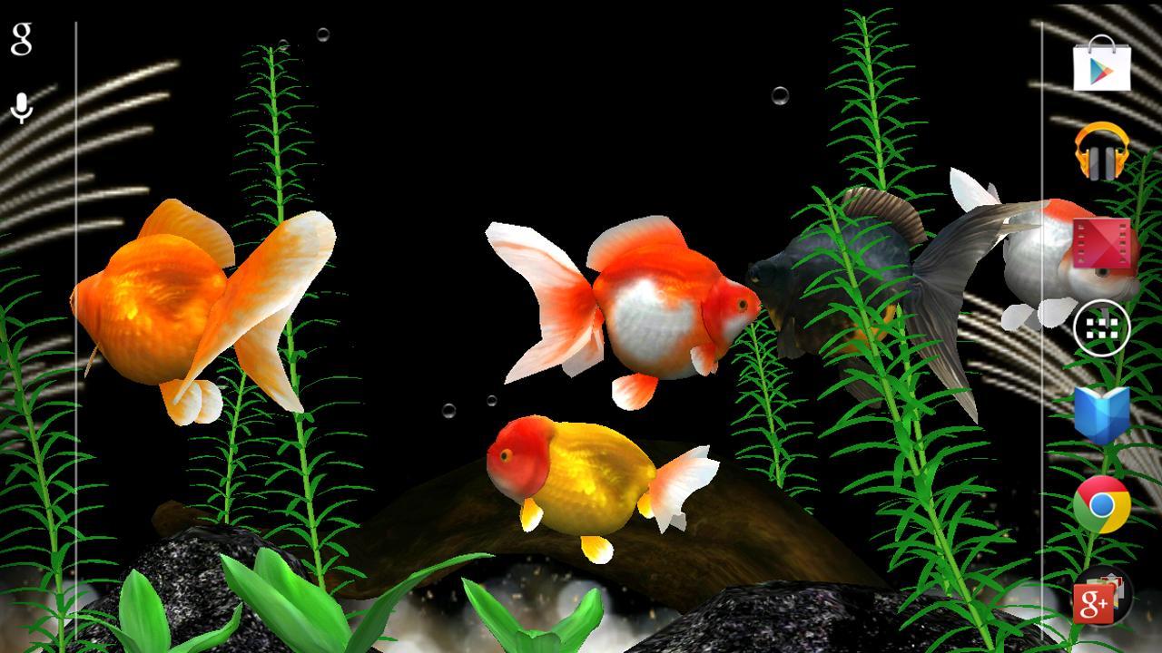 Cute Live Wallpapers For Android Apk Gold Fish 3d Live Wallpaper Aplicaciones De Android En