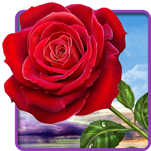 3d Live Wallpaper Android Apps Rose Magic Touch Flowers Android Apps On Google Play