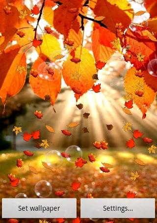Falling Leaves Live Wallpaper For Android Oto 241 O Live Wallpaper Gratis Aplicaciones Android En