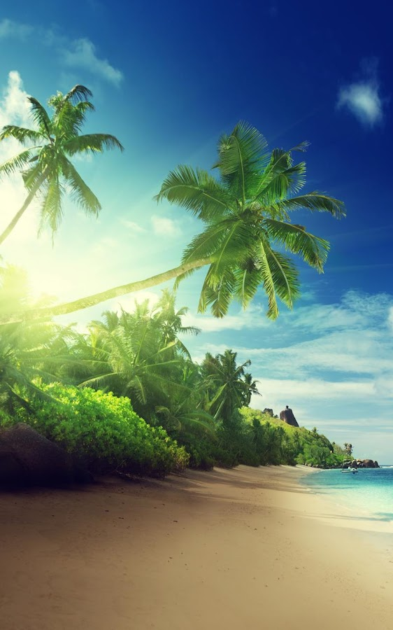 Tropical Ocean 3d Live Wallpaper Tropical Beach Live Wallpaper Android Apps On Google Play