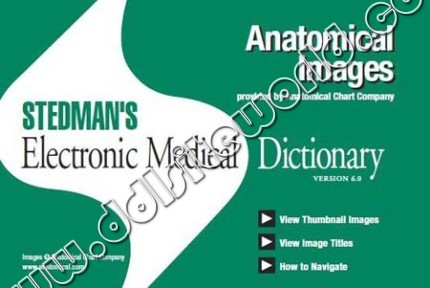 Stedmans Electronic Medical Dictionary 60 993MB crack
