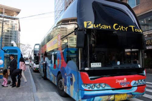busan city bus tours