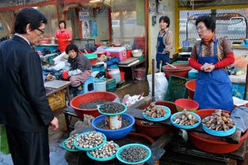 korea's biggest fish market, busan jalgachi fish market