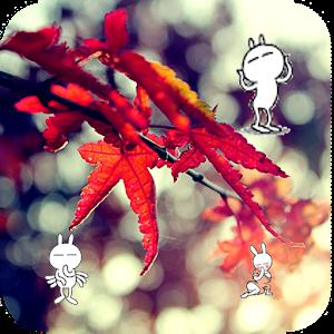 Falling Leaves Live Wallpaper Apk App Leaf Falling Live Wallpaper Apk For Kindle Fire