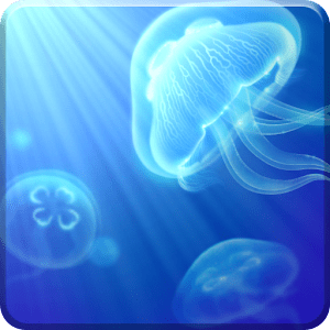 Live Jellyfish - Android Apps on Google Play