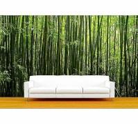 Bamboo Forest Wall Mural Wallpaper | Best Free HD Wallpaper
