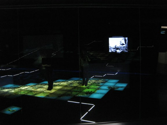 Backlit floor map of New Zealand with panels lighting up on the walls. At Te Papa Museum, Wellington