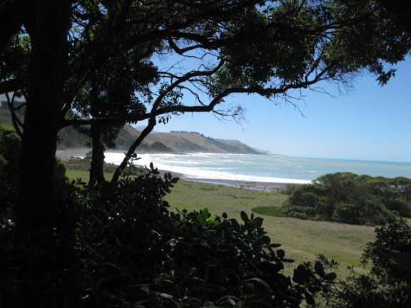 View from the Store in Kekerengu, near Blenheim