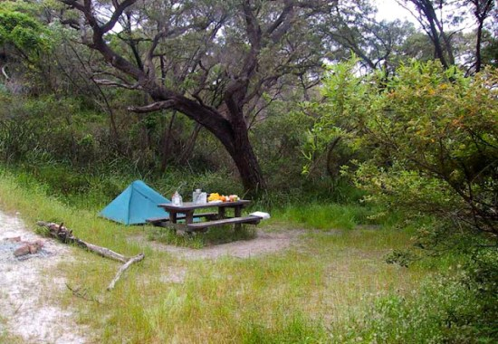 Camping at Deepdene Beach on the Cape to Cape Track