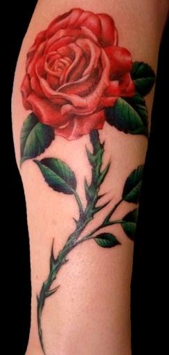red rose tattoos