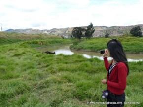 Río Tunjuelo, vacas pastando en su ribera