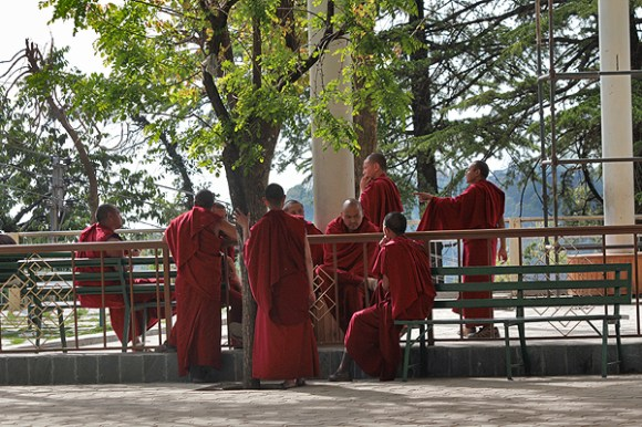 tibetan buddhist monks in mcleodganj, monks in dharamsala, dalai lama temple