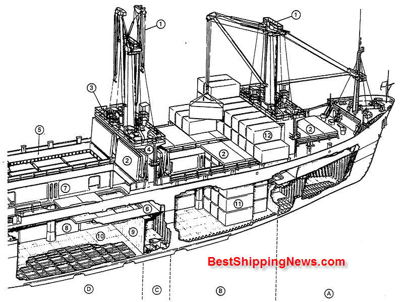 Cargo ship general structure, equipment and arrangement