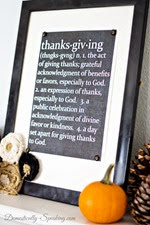 Domestically Speaking - Thanksgiving Defined
