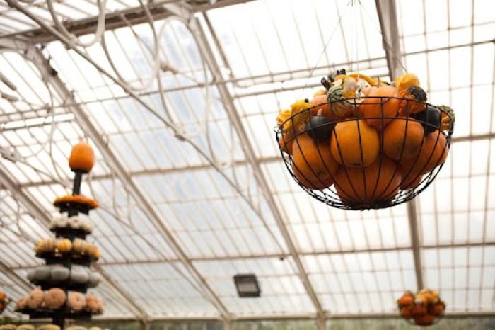 Kew Gardens Pumpkins 9