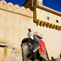 it is possible to enter the Amber fort on the back of an elephant - Canon T2i